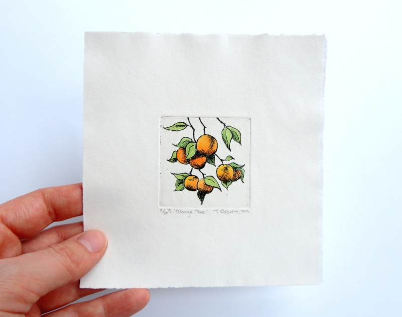 Oranges.  Hand coloured etching, varied edition.  2014.
